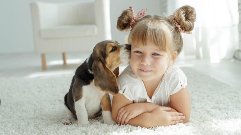 niña-perro